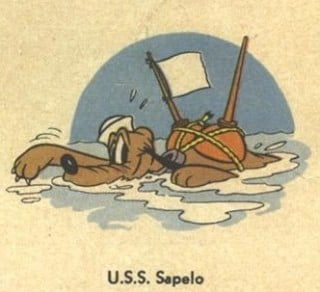 USS Sapelo cb