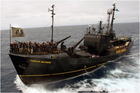 sea-shepherd-ship