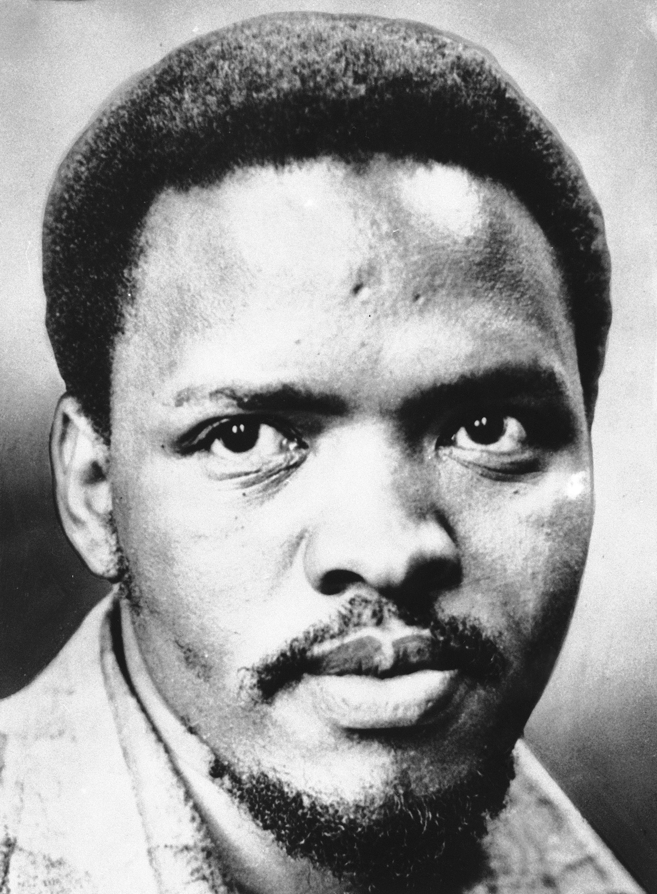 essay a brief history of punk rock in the cold war usni news steve biko in 1978