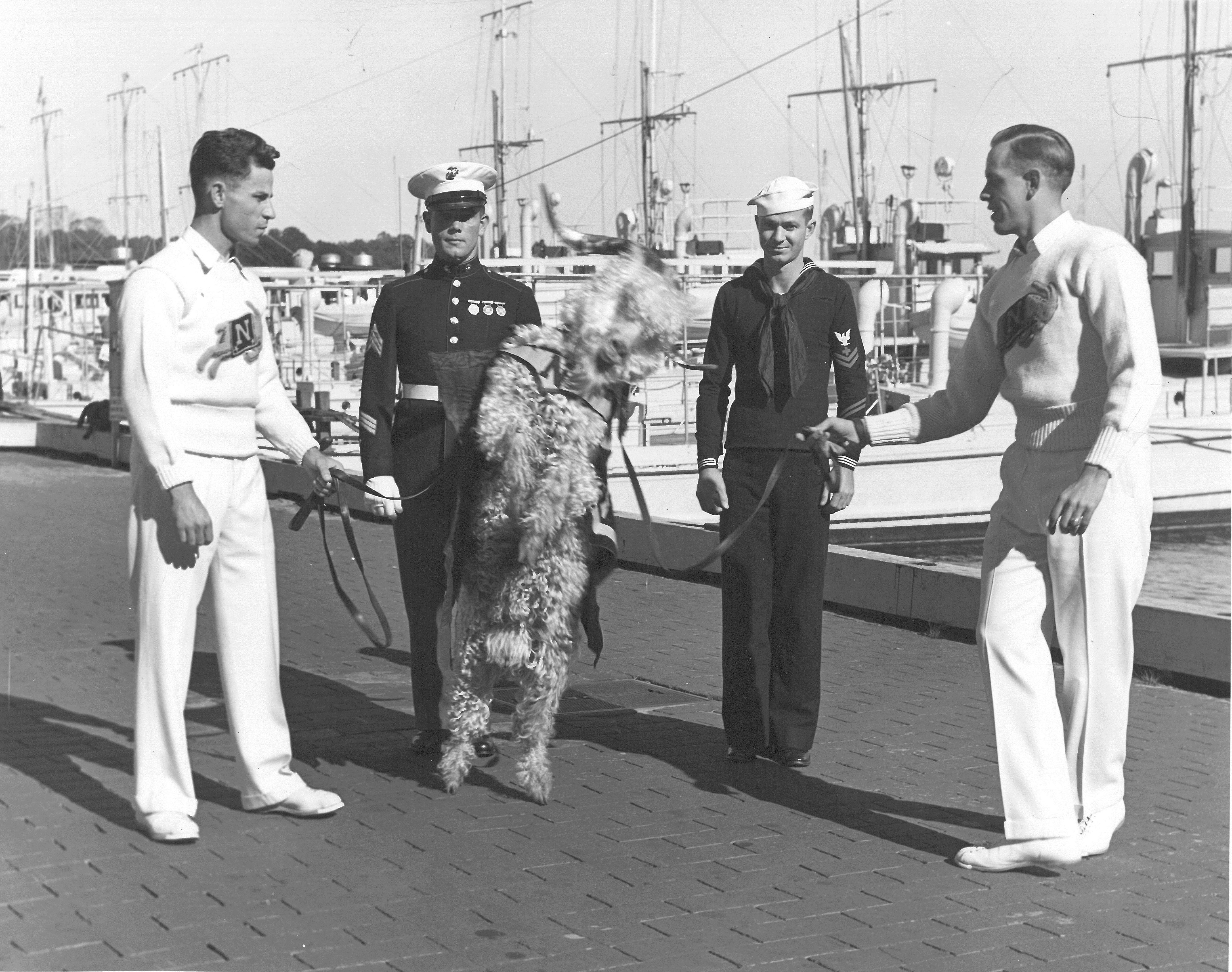 U.S. Naval Academy goat and goatkeepers in 1939.