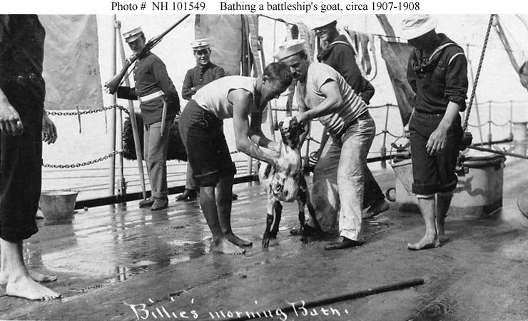 Bathing a battleship's goat circa in the early 1900s