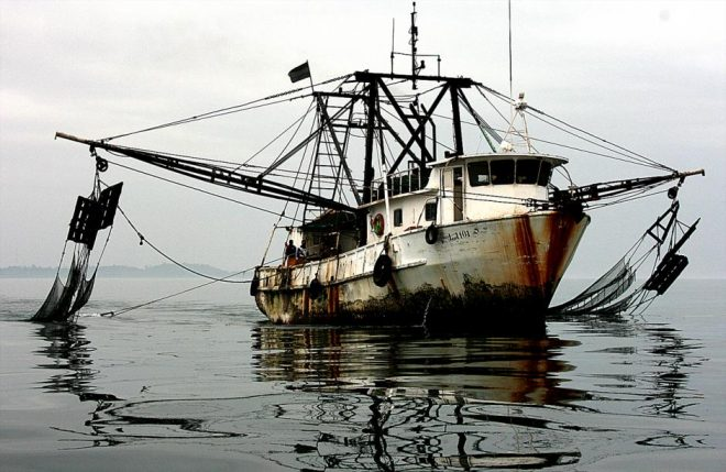Report: Illegal Fishing Should be Major National Security Issue