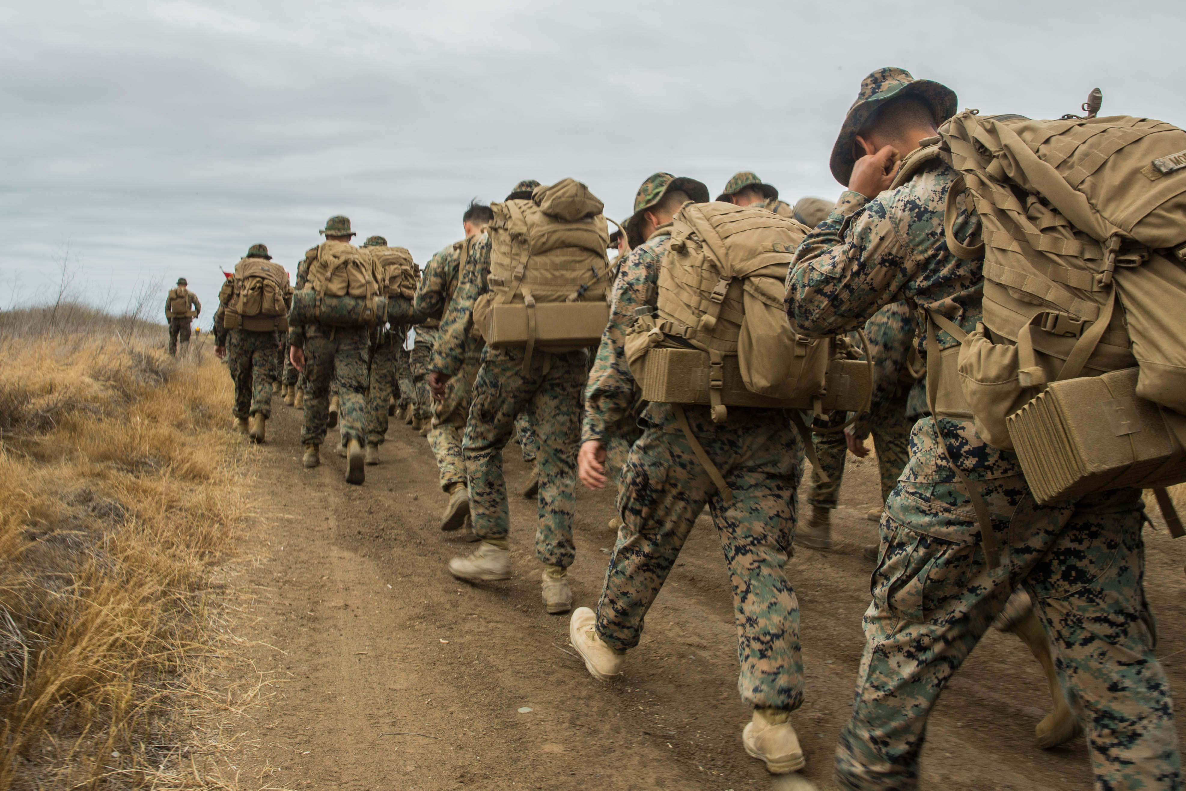 Marine Corps Wants Forces in U S  Ready to Surge for Major