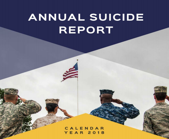 Pentagon Annual Suicide Report