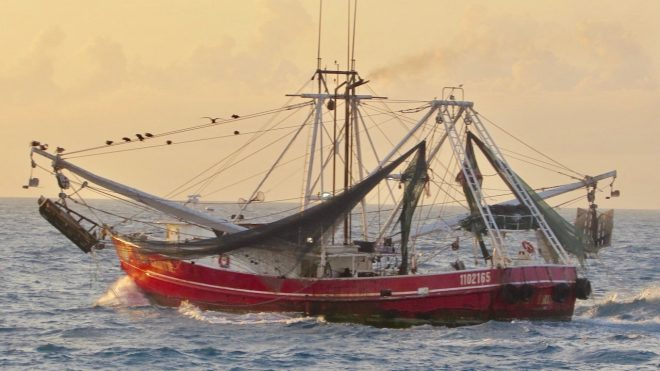 Coast Guard: Excessive Fishing Becoming 'Instrument of National Power' In Oceania, Pacific
